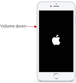 fix iphone reboot loop