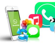 recover deleted whatsapp messages on android phone