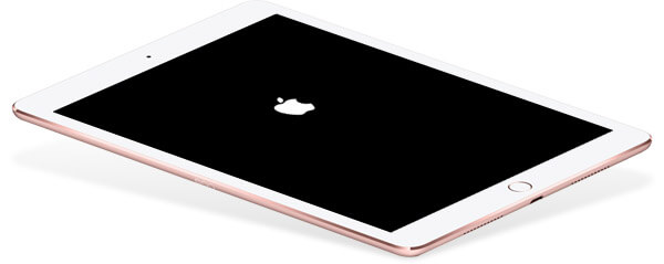 ipad apple logo