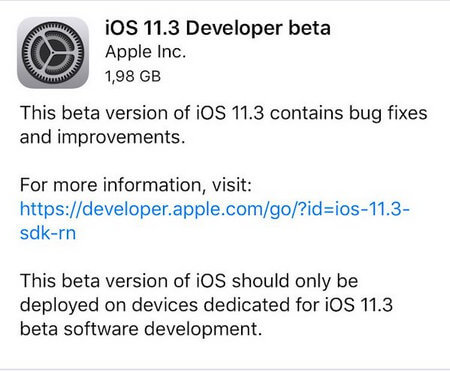 developer beta