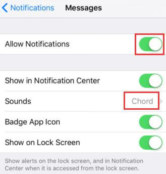 check iphone settings