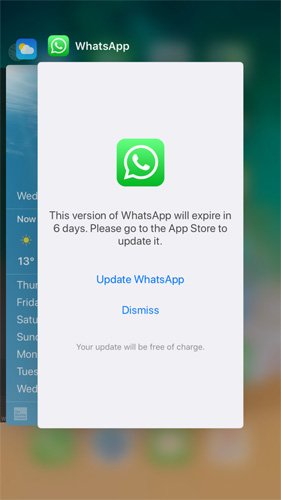 WhatsApp Crashes on iPhone/Android - How to Fix It